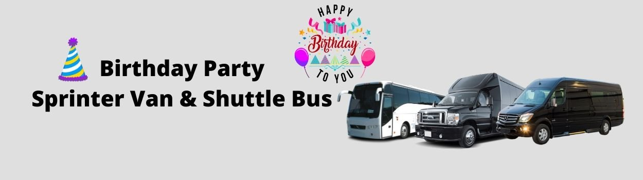 nyc birthday party sprinter-van shuttle bus service