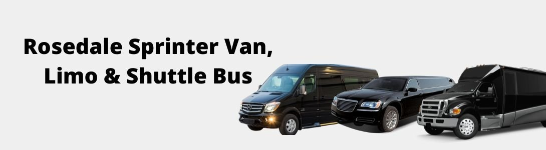Rosedale ny sprinter van limo shuttle bus